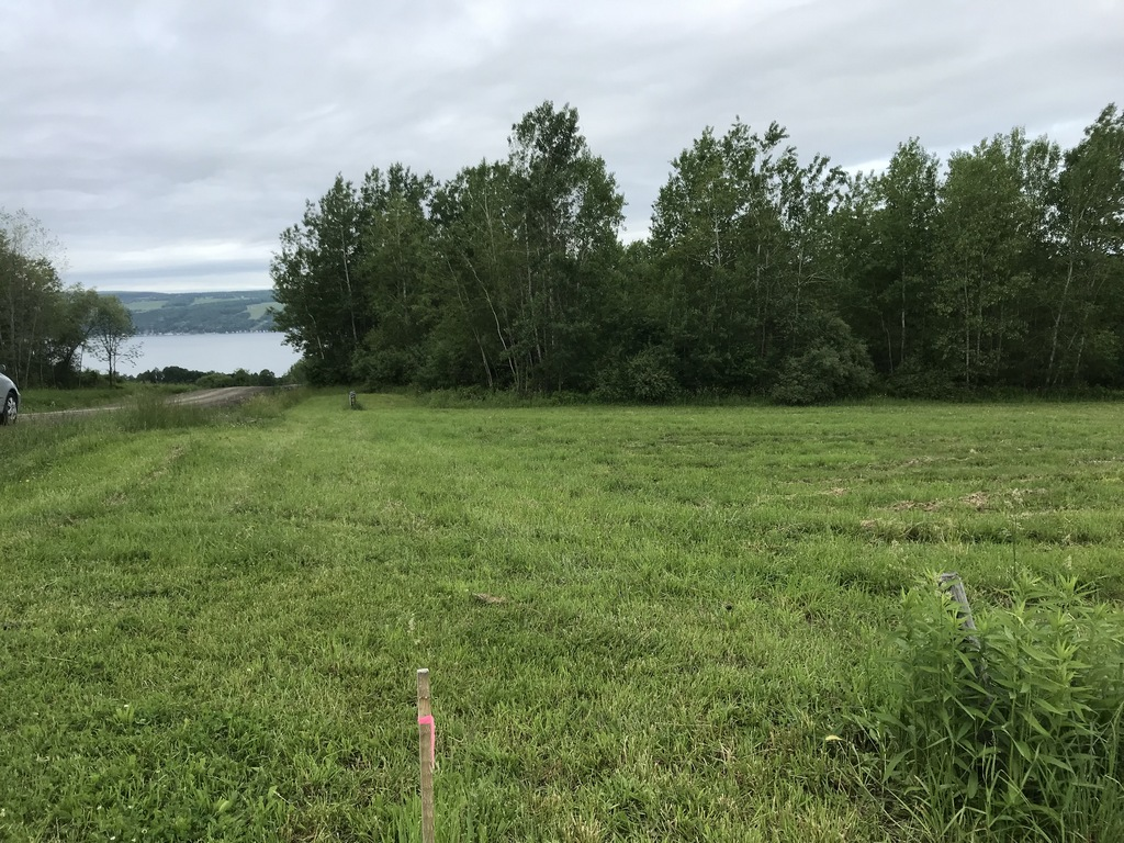 View of Keuka Lake from Lot 5, Goodwin Hill has been paved, too.